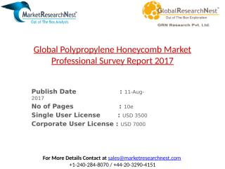 Global Polypropylene Honeycomb Market Professional Survey Report 2017.pptx