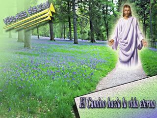 08 El camino hacia la vida eterna.ppt