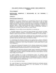 REGLAMENTO FEDERAL DE SEGURIDAD, HIGIENE Y MEDIO AMBIENTE DE TRABAJO.rtf