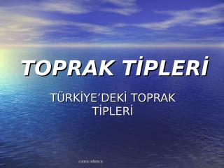 10.sınıf türkiyenin toprak tipleri sunusu.ppt
