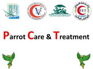 parrot care.pdf