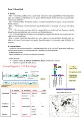 Tema2-brucela.doc